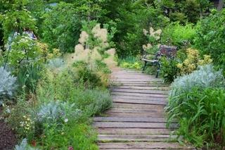 English_garden.jpg