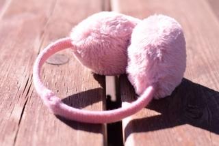 ear-muffs.jpg