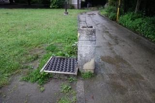 ground-rain.jpg