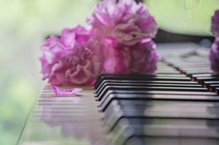 piano_roses.jpg