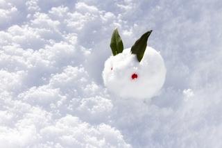 snow-rabbit.jpg