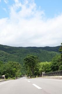 summer_road.jpg
